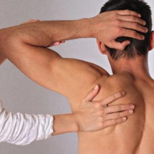 Mit Osteopathie lassen sich nicht nur Muskeln und Gelenke behandeln, sondern auch die inneren Organe.